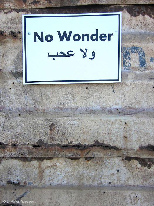Foto  Wonder? No wonder! 2